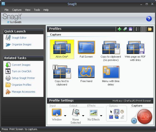 Окно управления снятием скриншотов SnagIt